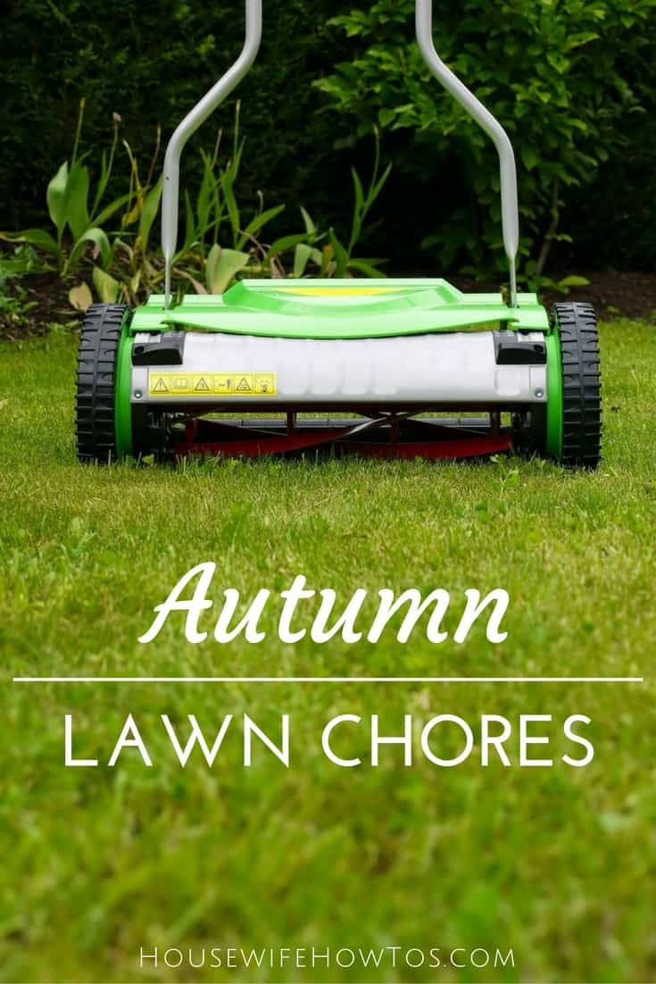 Why fall is the most important season for your lawn - Lawn chores for autumn