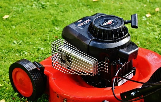 Why fall is the most important season for your lawn - Mow regularly
