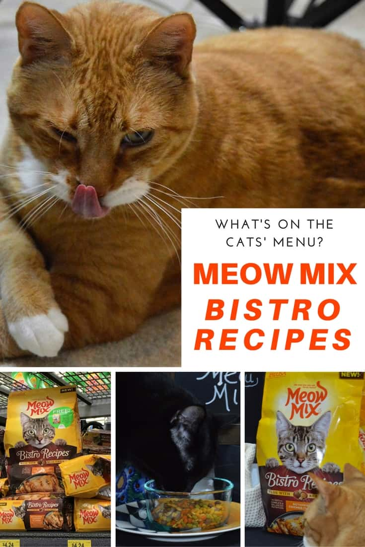 Meow Mix Bistro Recipes - Feline foodies go wild for the real rotisserie chicken flavor