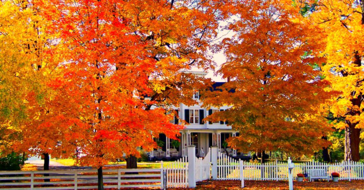 preparing your home for fall 7 easy steps will save you money