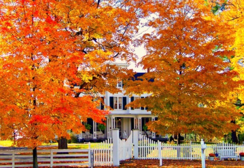 Preparing your Home for Fall - 7 Steps to take NOW