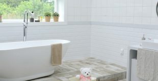 Is It Mold or Mildew (and why does it matter?)