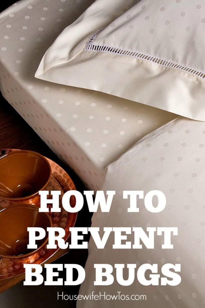 How To Prevent Bed Bugs - Easy steps to keep from bringing them into your home where they can cost over $1,000 to get rid of once they are there! #bedbugs #pestcontrol #householdpest #cleaning