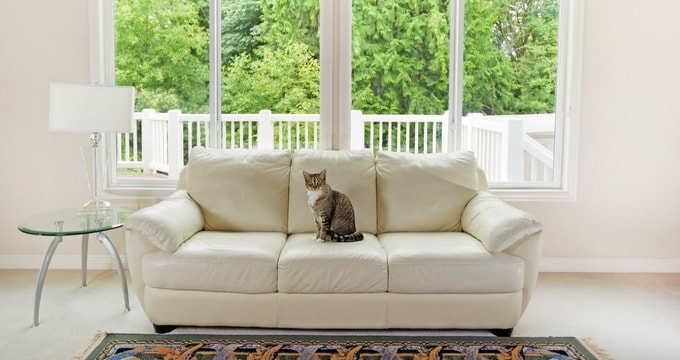 5 Smart Tips To Keep Your Carpets Clean This Summer