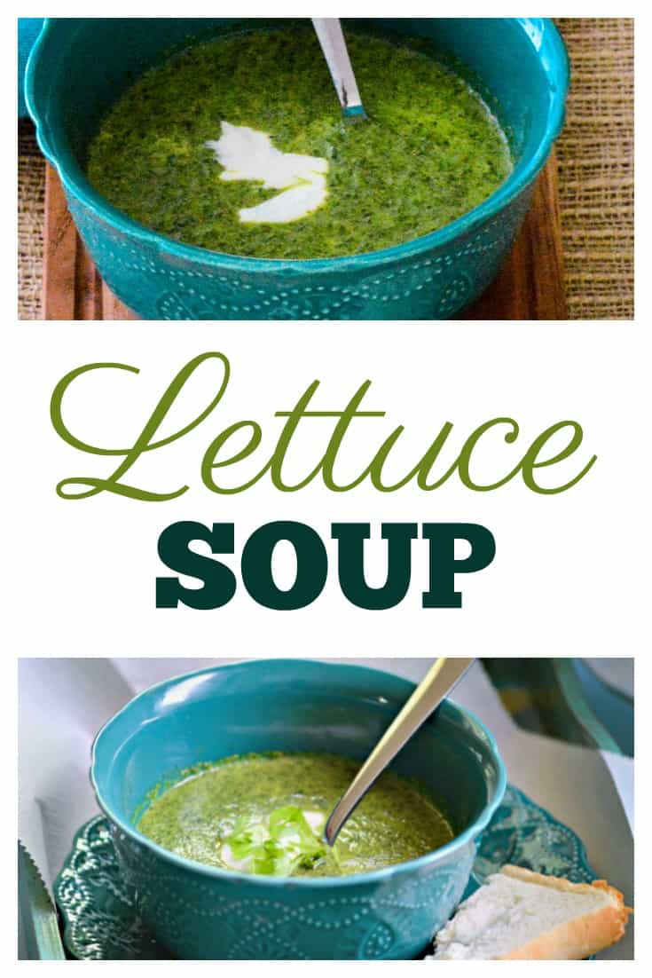 Lettuce Soup - When the garden hands you too much lettuce this is an easy and delicious alternative to salads and can be served warm or chilled.