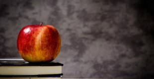 Back-To-School Organizing Tips: 6 Smart Ideas