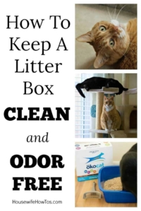 How To Keep A Litter Box Clean and Odor Free | Four steps to keep your cats litter box clean without the yucky scrubbing #ad #bebetterthanclay