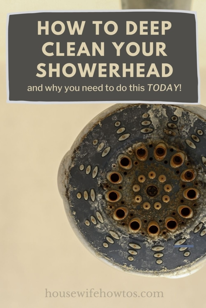 """Hand-held showerhead covered with mildew and buildup. A text overlay reads """"How to Deep Clean Your Showerhead"""""""