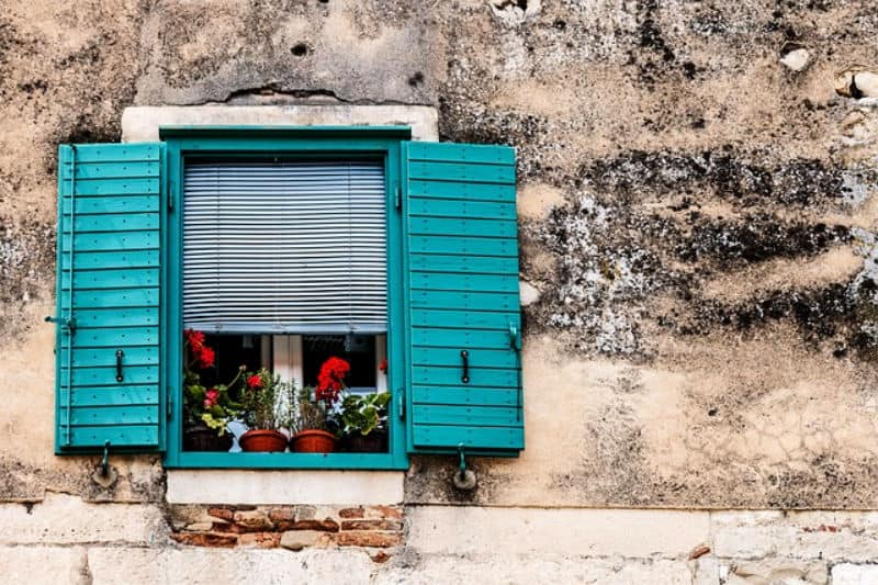 Open window with potted plants on sill