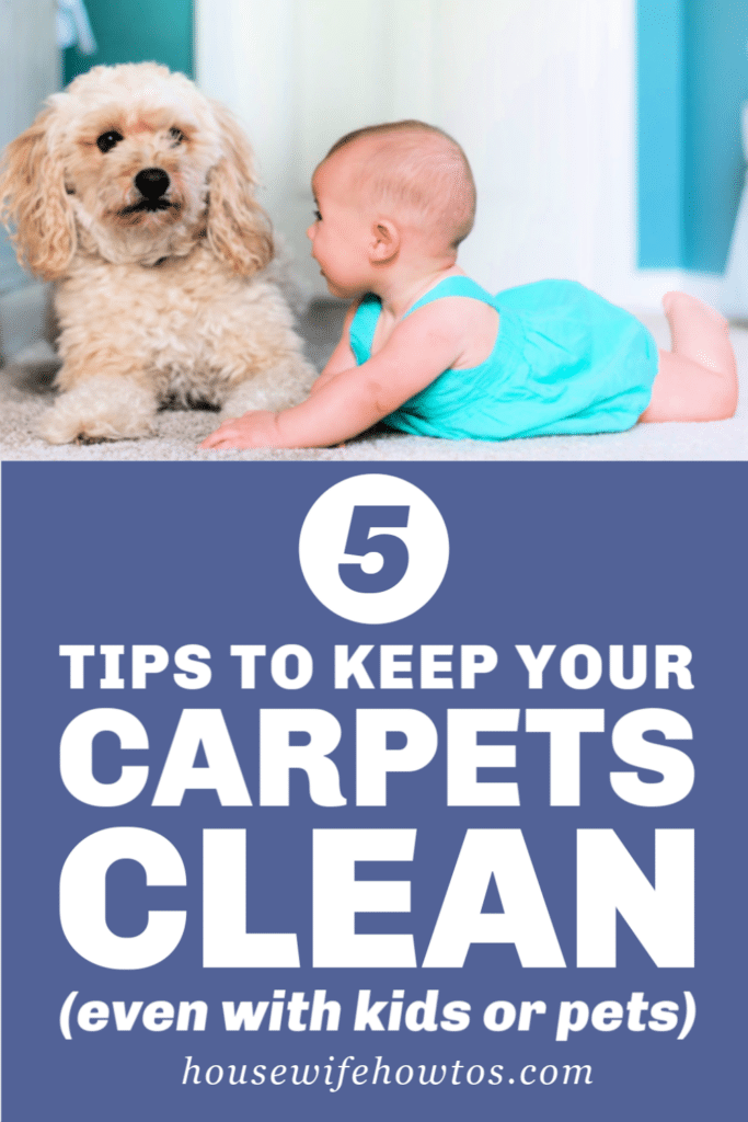 5 Tips to Keep Your Carpets Clean even if you have Kids or Pets