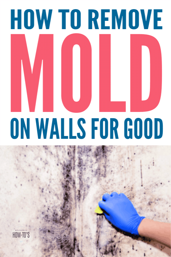 How to Remove Mold on Walls for Good