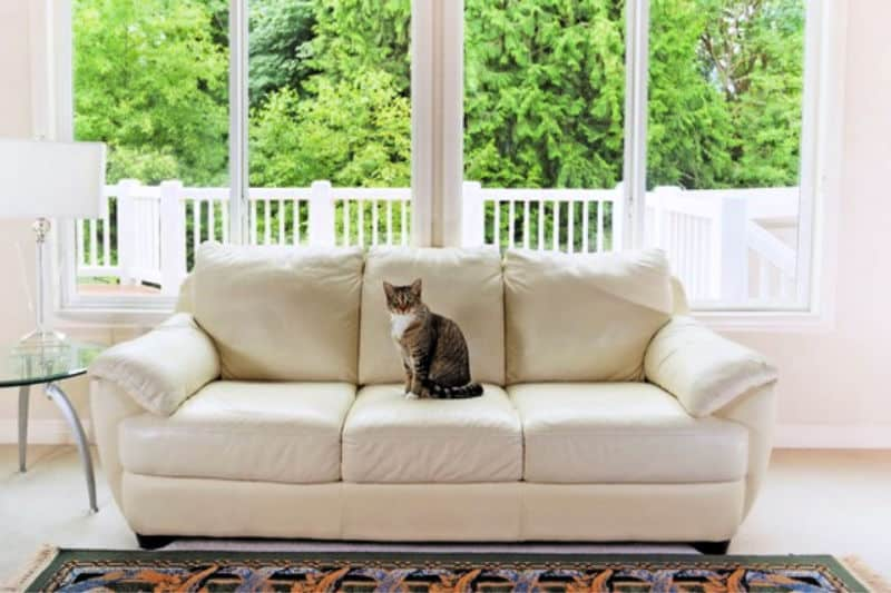 Ways to Make House Self-Cleaning