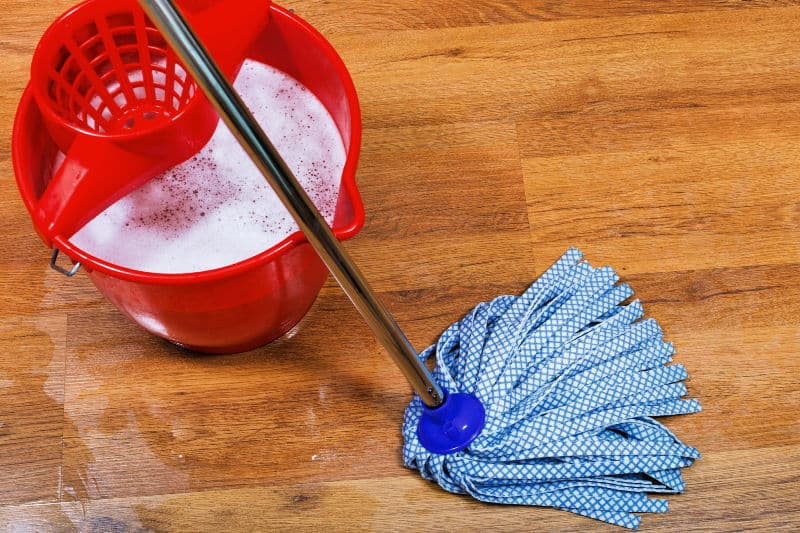 Fabric mop and bucket of homemade floor cleaner