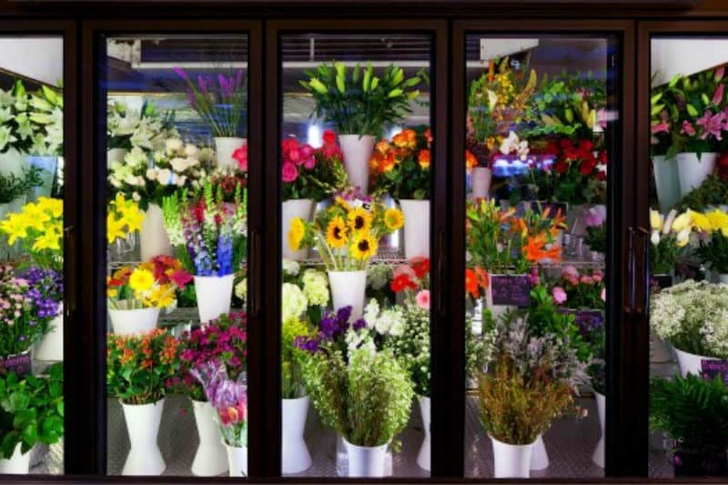 Bouquets in refrigerator cooler to keep cut flowers fresh