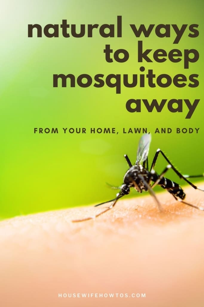 """Closeup of mosquito on human skin. A text overlay reads """"Natural ways to keep mosquitoes away from your home, yard, and body"""""""
