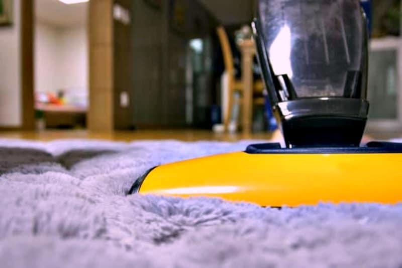 Yellow upright stick vacuum cleaning carpet