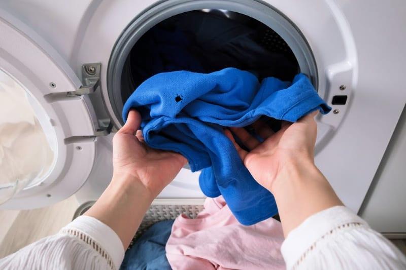Comment nettoyer les dégâts dans la sécheuse