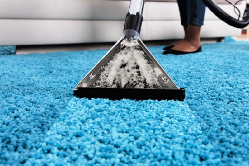 Woman using machine to steam clean shag carpeting