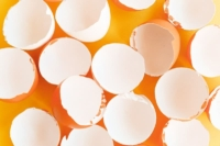 Overhead view of clean, empty eggshells on a yellow background