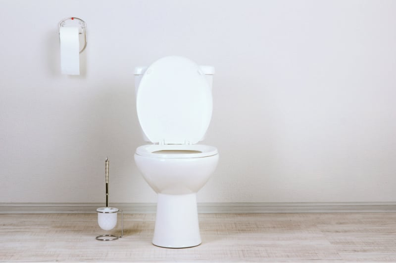 Toilet paper and bowl brush next to open toilet in minimalist bathroom