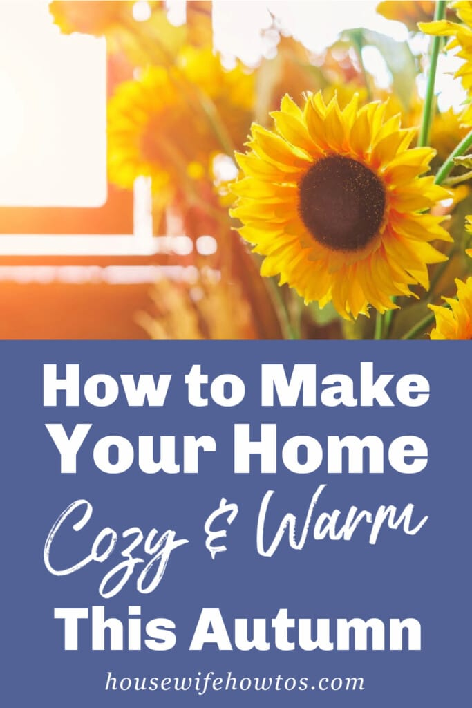 How to Make Your Home Cozy and Warm this Fall