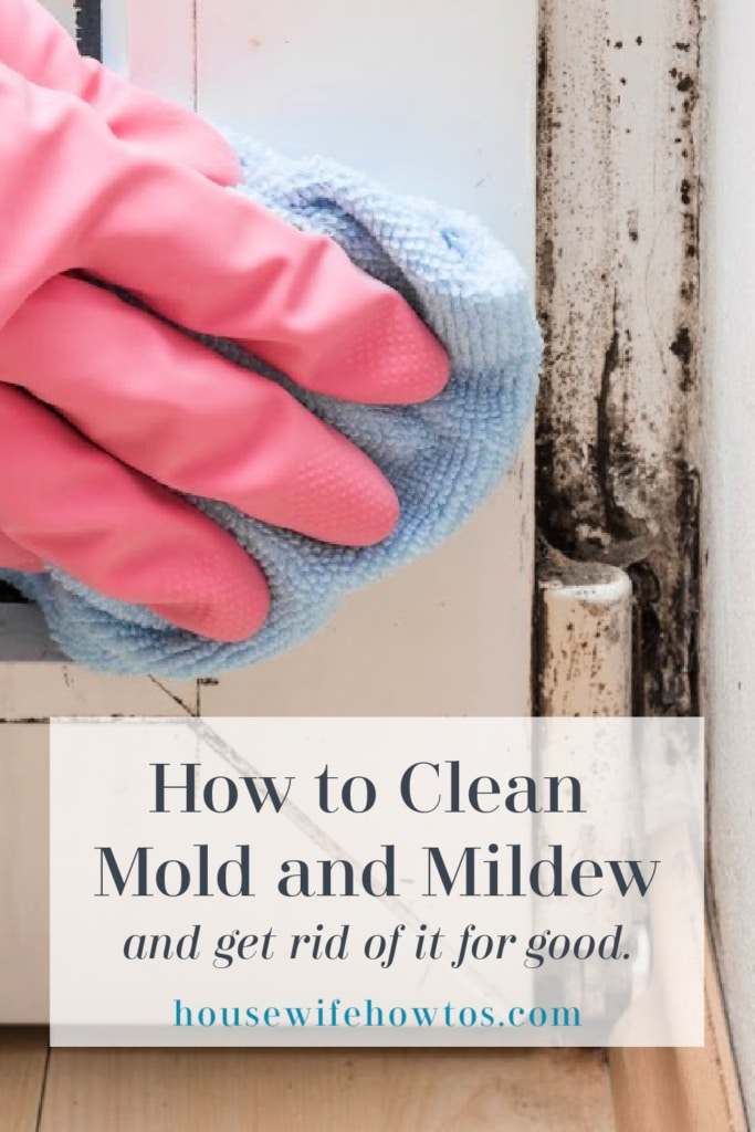 How to Clean Mold and Mildew and Get Rid of it for Good
