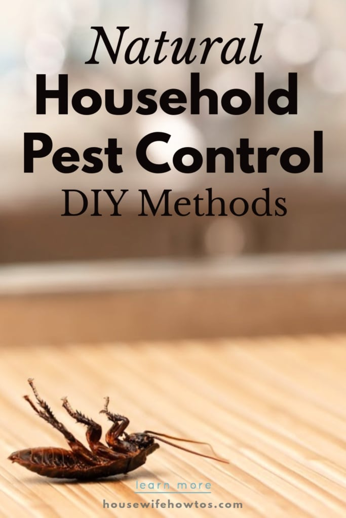 Natural Pest Control Household DIY Methods