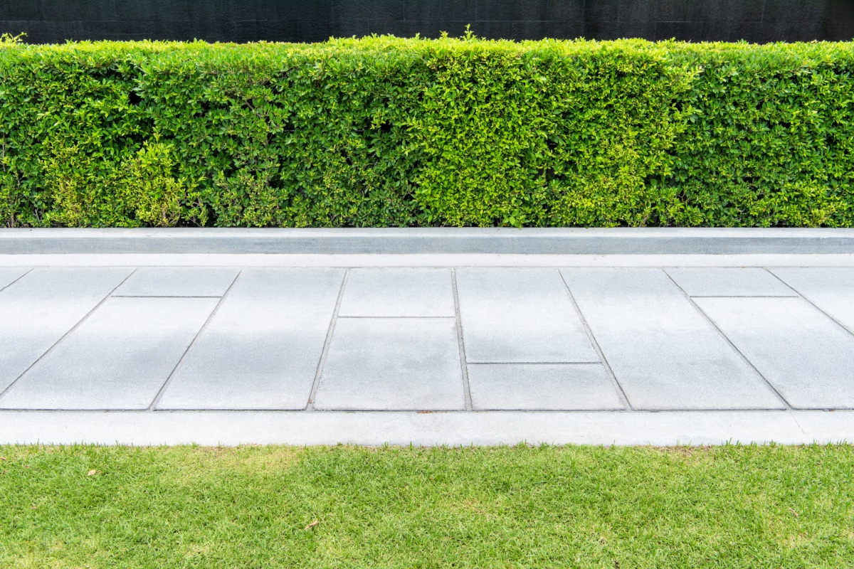 Clean concrete walkway bordered by trimmed lawn and hedge
