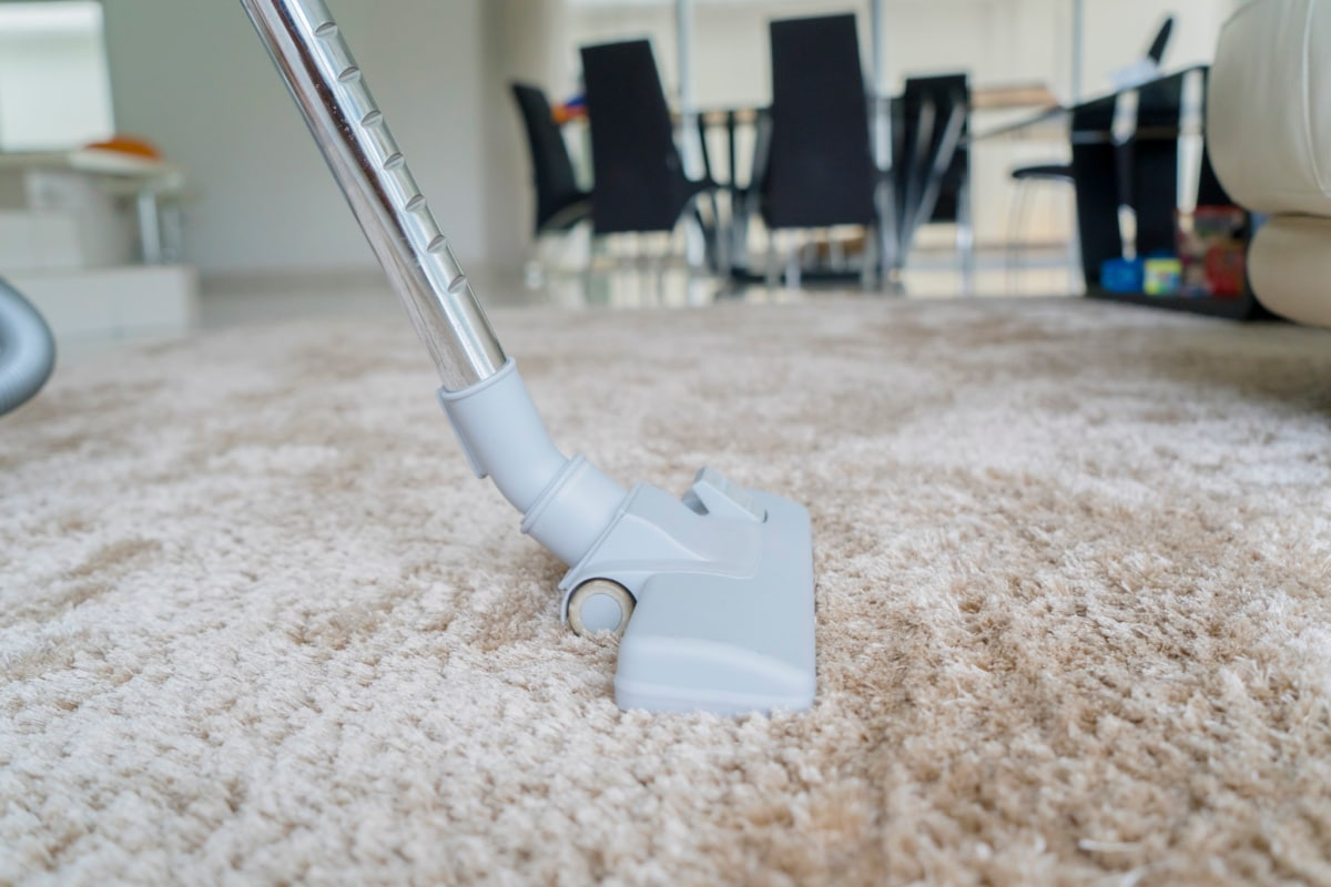 Closeup of someone using a canister vacuum on a shag rug